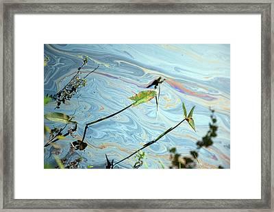 Oil Spill Framed Print by Jim West