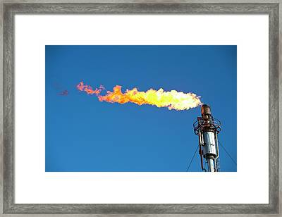 Oil Terminal Flaring Off Gas Framed Print by Ashley Cooper