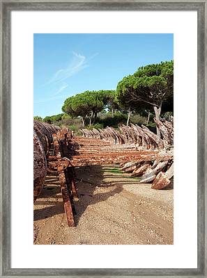 Old Anchors Rusting Framed Print by Jon Wilson