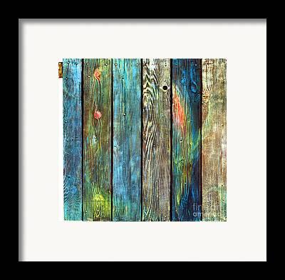 Asha Carolyn Young Door Series Framed Prints