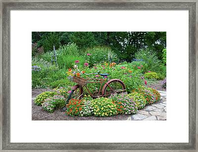 Old Bicycle With Flower Basket Framed Print