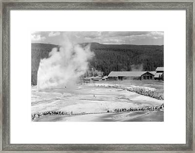 Old Faithful In Yellowstone National Park Framed Print