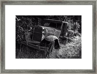 Old Model T Ford In The Jungle Maui Hawaii Framed Print by Edward Fielding