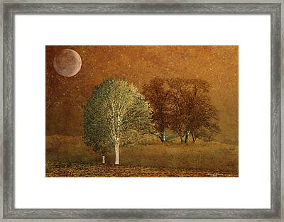 On A Cold Winter Night Framed Print by EricaMaxine  Price