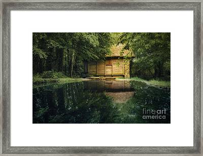 On A Lake Framed Print by Svetlana Sewell