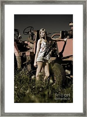 On The Farm At Dusk Framed Print
