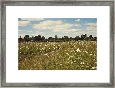 On The Summer Meadow. Russia Framed Print by Jenny Rainbow