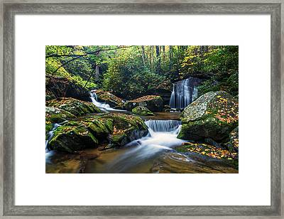 On The Way To Catawba Falls Framed Print by Andres Leon