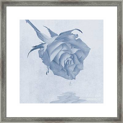 One Drop Of Love... Framed Print by John Edwards