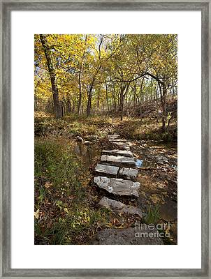 One Step At A Time Framed Print by Iris Greenwell