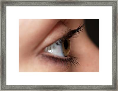 Open Eye Of Young Woman Framed Print