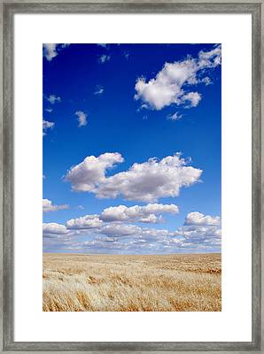 Openness Framed Print
