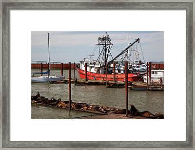 Or,  Astoria, East Basin Moorage Framed Print