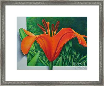 Framed Print featuring the painting Orange Lily by Pamela Clements