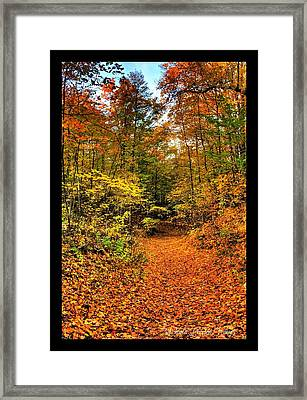 Framed Print featuring the photograph Orange Path by Michaela Preston