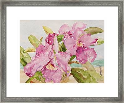 Orchid On The Beach Framed Print