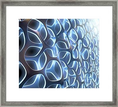 Organic Mesh Framed Print by Andrzej Wojcicki/science Photo Library