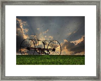 Out To Pasture Framed Print by Lori Deiter