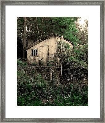 Overgrown Framed Print by Steve Godleski