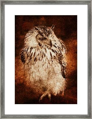 Owl Framed Print by Svetlana Sewell