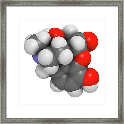 Oxymorphone Opioid Analgesic Drug Framed Print by Molekuul