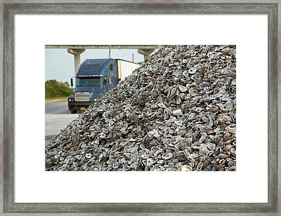 Oyster Shells After Processing Framed Print