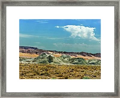 Painted Desert National Park Framed Print by Bob and Nadine Johnston