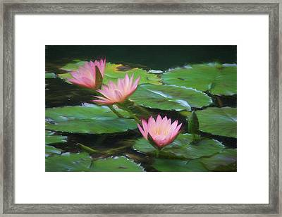 Painted Lilies Framed Print