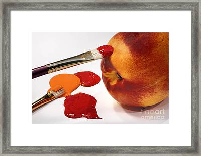 Painting Natures Colors Framed Print by Amy Cicconi