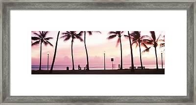 Palm Trees On The Beach, Waikiki Framed Print
