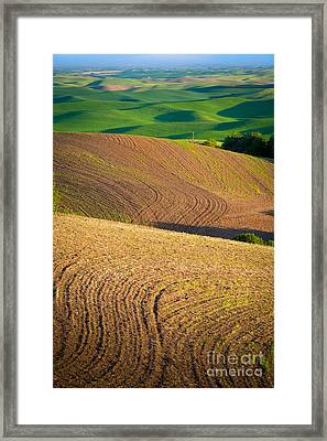Palouse Swirls Framed Print