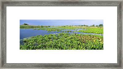 Panorama Of Lakes And Channels Framed Print by Martin Zwick