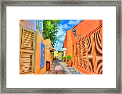 Paradise Colors Framed Print