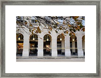 Paris Palais Royal Architecture Lanterns - Paris Palais Royal Gardens  - Paris Autumn Fall Trees Framed Print