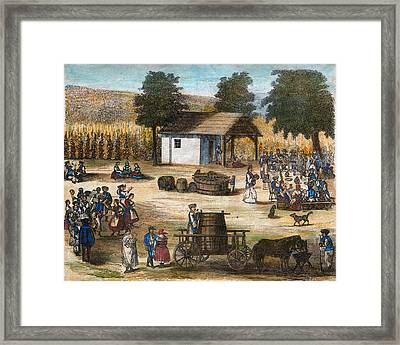 Party Of The Harvest Of The Grapes Framed Print
