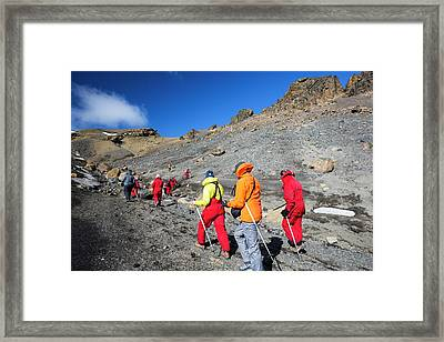 Passengers On An Expedition Cruise Framed Print by Ashley Cooper
