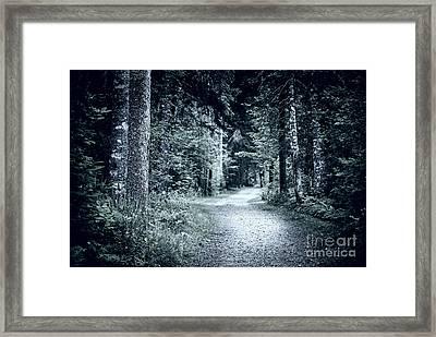 Path In Dark Forest Framed Print