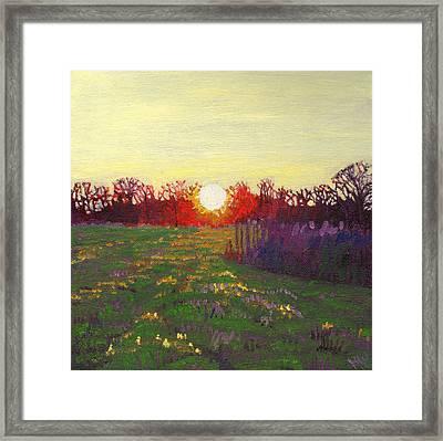 Path Of Light Framed Print by Helen White