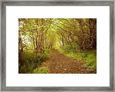 Path To The Beach Framed Print by Susan Parish