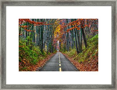 Paths Framed Print