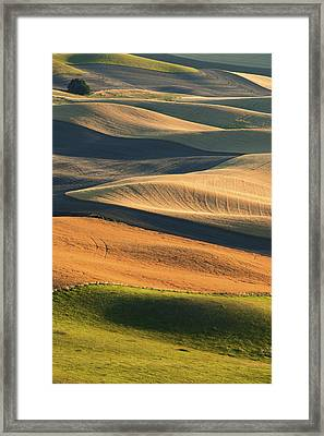 Patterns Of The Palouse Framed Print by Latah Trail Foundation