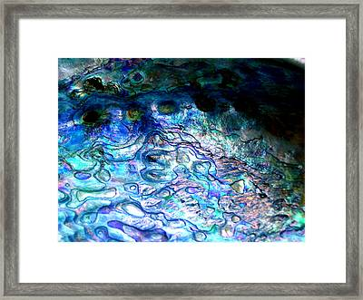 Paua Shell Framed Print