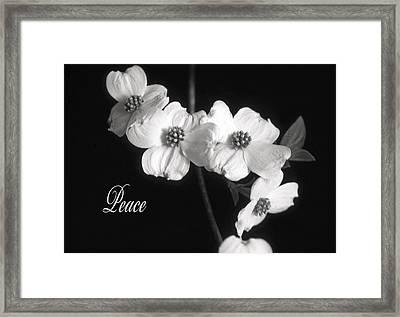 Peace Framed Print by Marion Johnson