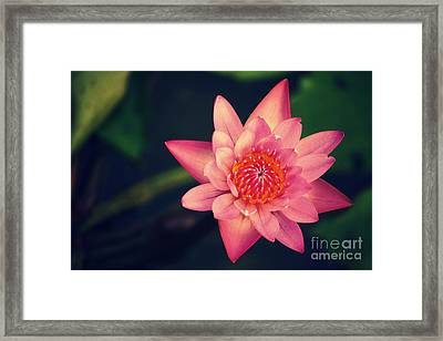 Peace Within Framed Print by Vishakha Bhagat