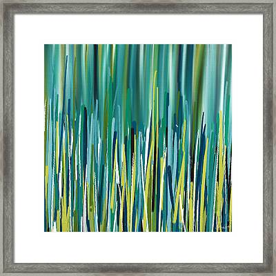 Peacock Spikes Framed Print
