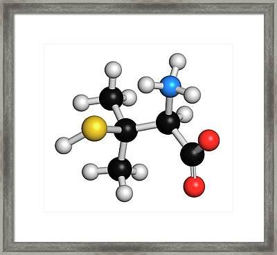 Penicillamine Drug Molecule Framed Print