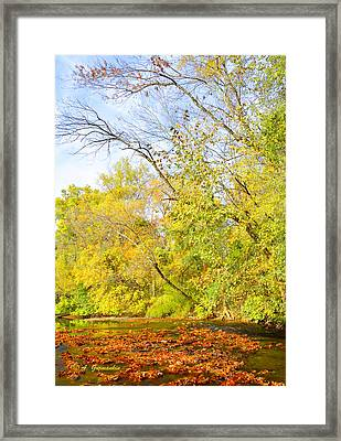 Pennsylvania Autumn Pennypack Creek Philadelphia Pennsylvania Framed Print