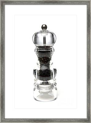 Pepper Mill Framed Print by Victor de Schwanberg