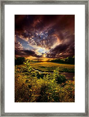 Perspective Framed Print by Phil Koch