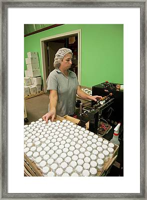 Pharmaceutical Manufacturing Framed Print